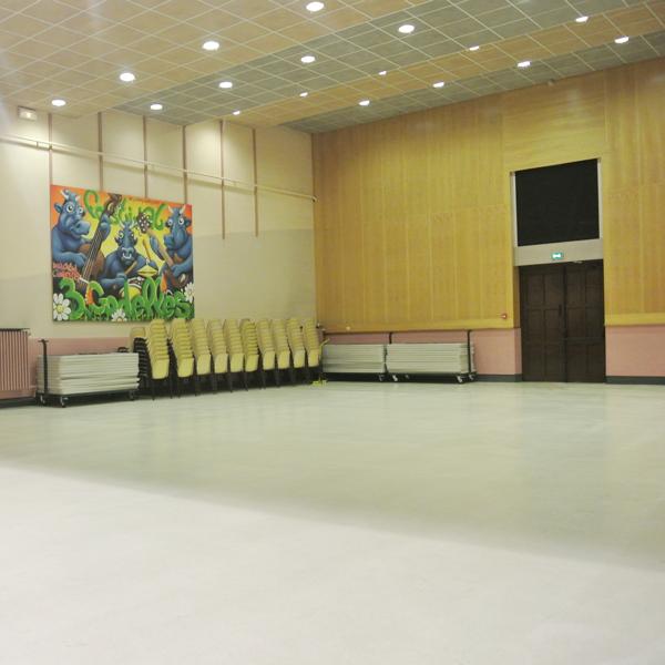 Salle des roises ville de commercy for Piscine commercy